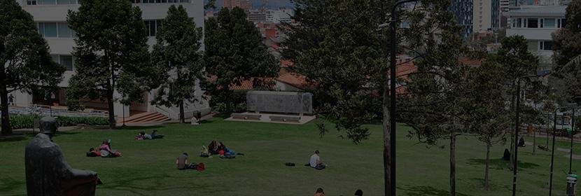 Facultad de economía, Campus, programas
